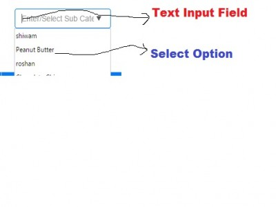 Select box along with text input box using HTML